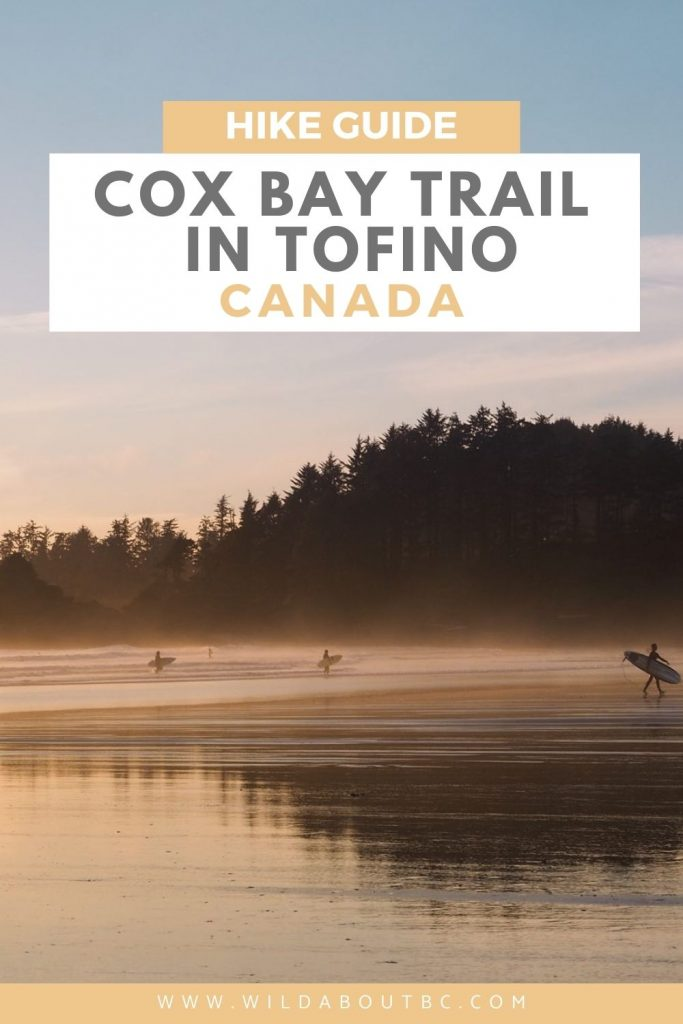 TOFINO'S BEST HIKE | Hike the short distance to the top of the Cox Bay trail for the most epic views of Tofino, Clayoquot Sound and West Coast Canada!!