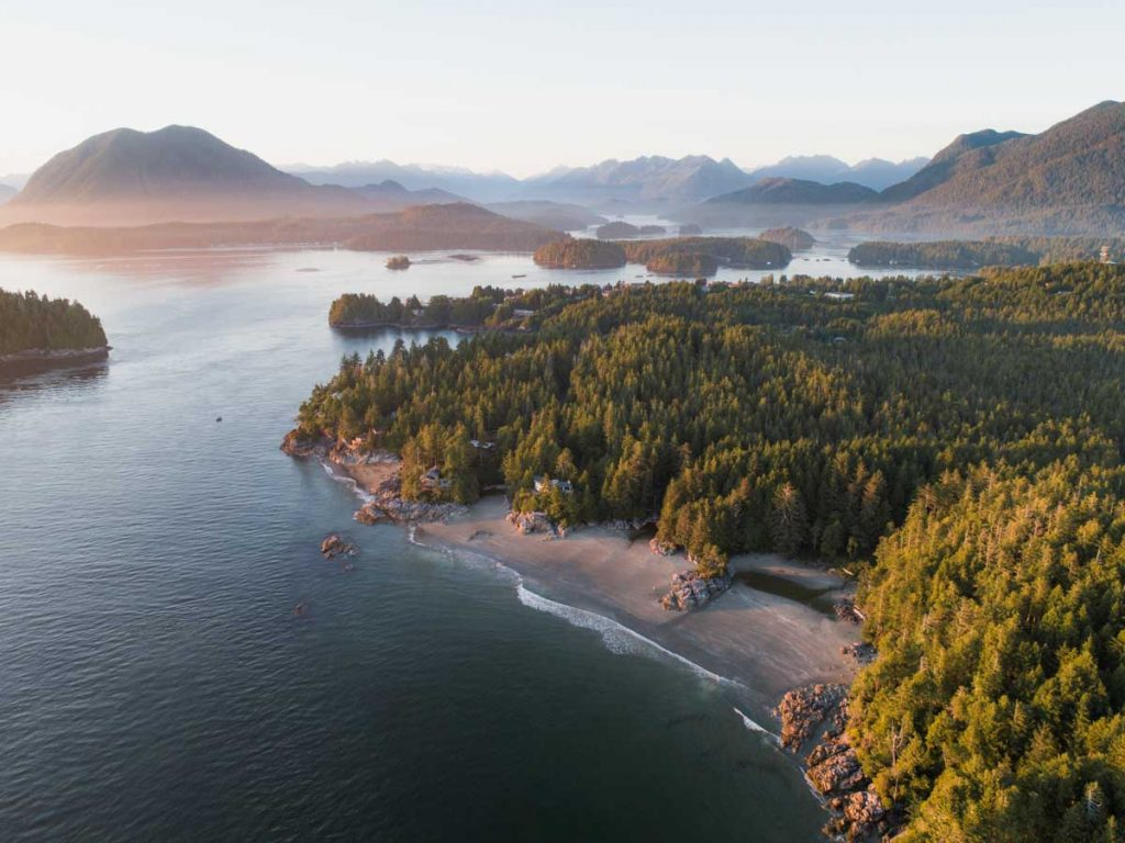 17 Best Things to do in Tofino BC