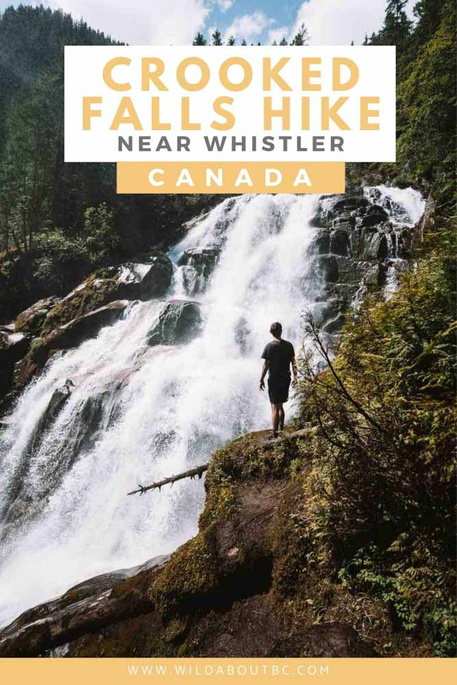 The Crooked Falls Hike in Squamish is a cool trail that takes you through old growth forests, has aerial views of the Squamish River and an epic waterfall!