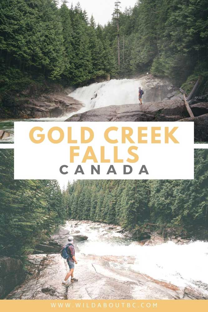 The Lower Falls Trail in Golden Ears is a short and easy hike just an hour from downtown Vancouver with awesome views of Gold Creek Falls!