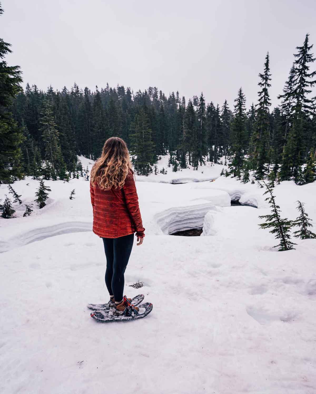 Dog Mountain Snowshoe