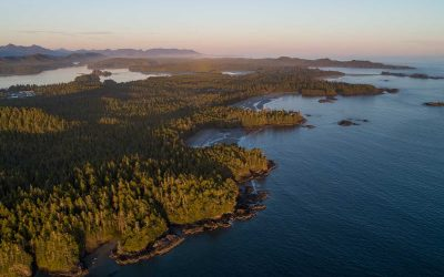EPIC VANCOUVER ISLAND ROAD TRIP ITINERARY