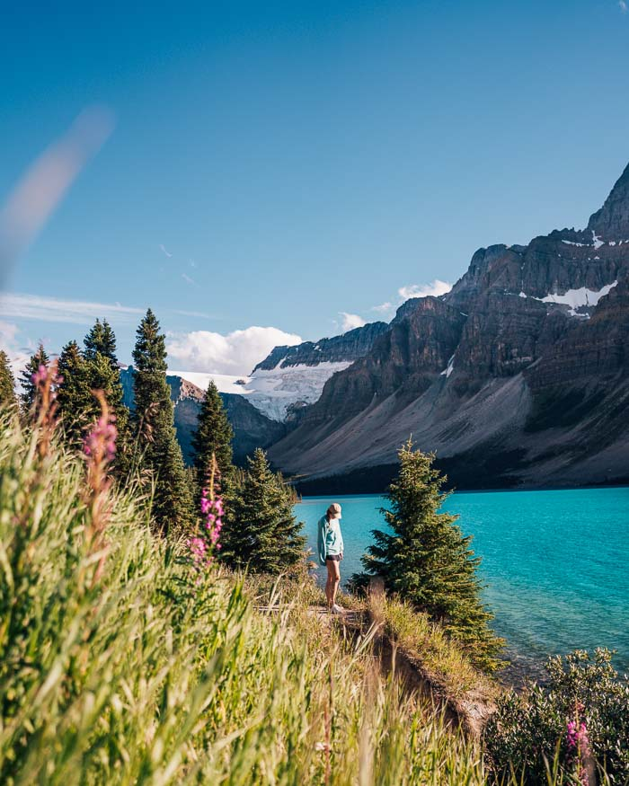 Bow Lake - Icefields Parkway