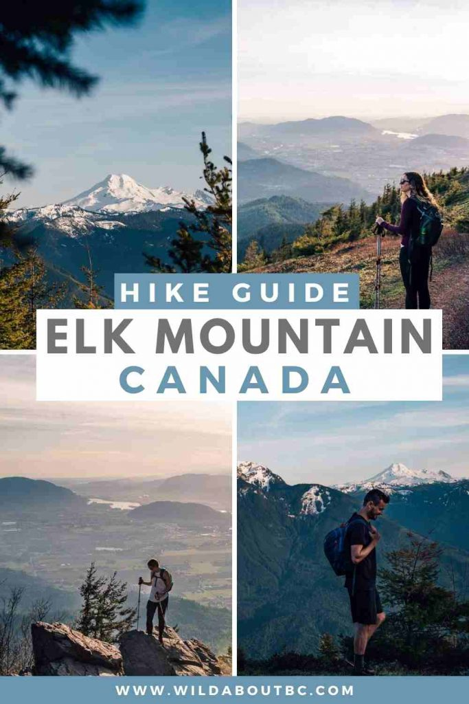 Considering tackling the Elk Mountain hike in Chilliwack? This guide walks through what to expect and when to go!
