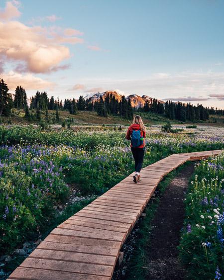 Taylor Meadows in Garibaldi Provincial Park