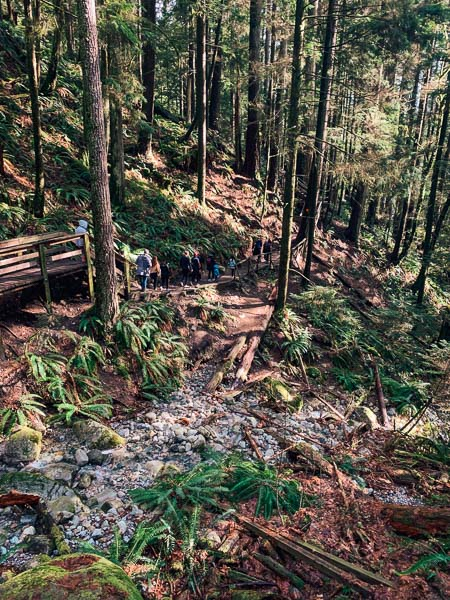 Views of the trail in Deep Cove to Quarry Rock lookout