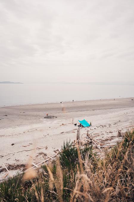 South Beach on Savary Island